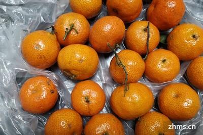 小雪吃什么水果  小雪吃它冬季不在冷