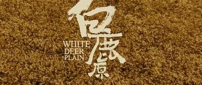 获茅盾文学奖的白鹿原作者  陈忠实有哪些其他作品